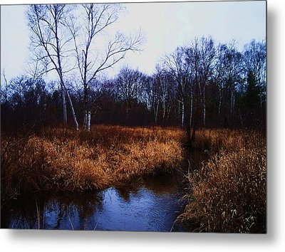 Winding Creek 2 Metal Print by Anna Villarreal Garbis
