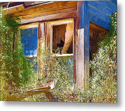 Metal Print featuring the photograph Window 2 by Susan Kinney