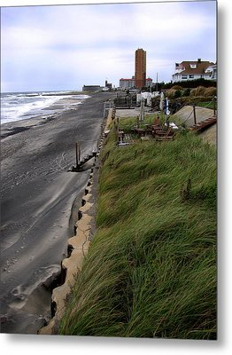 Windswept Metal Print by Colleen Kammerer