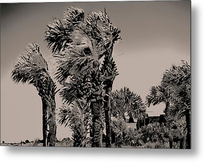 Windy Day At Beach Metal Print