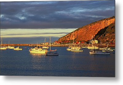 Metal Print featuring the photograph Winter Afternoon Sun At Friendly Bay by Nareeta Martin