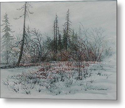Winter, Alberta Metal Print