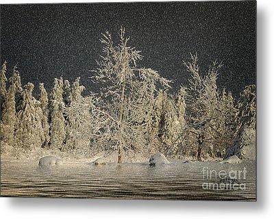 Winter Begins Metal Print by Lois Bryan