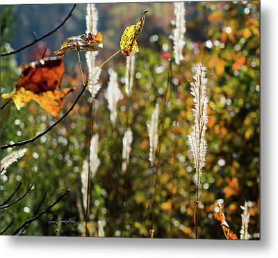 Winter Color Metal Print by George Randy Bass