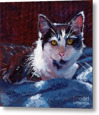 Winter Comfort Metal Print by Pat Burns