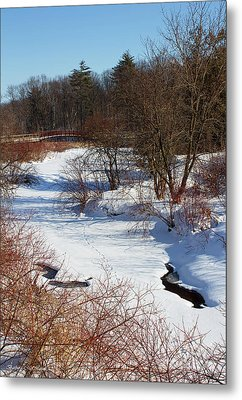 Winter Creek Lined With Red Osea Dogwood Metal Print by Barbara McMahon