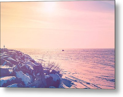 Metal Print featuring the photograph Winter Fun by Joel Witmeyer