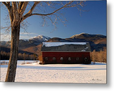 Metal Print featuring the photograph Winter In New England by Alana Ranney
