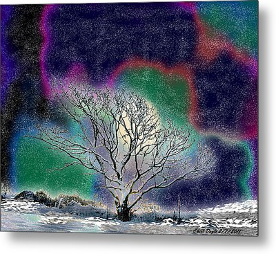 Winter In Oklahoma 2011 Metal Print
