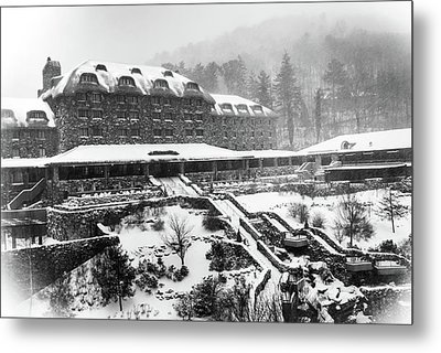 Winter In The Grove Metal Print