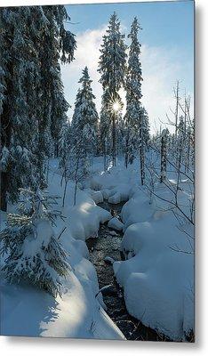 winter sun in Upper Harz Metal Print