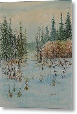 Winter Trail Alberta Metal Print