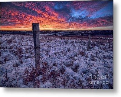 Winter Views Metal Print by Ian McGregor