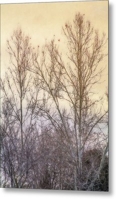 Winter Whisper In The Trees Metal Print