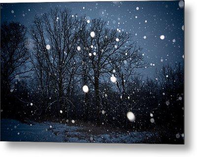 Winter Wonder Metal Print by Annette Berglund