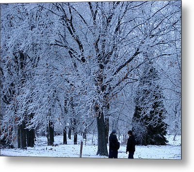 Winters Beauty Metal Print by Dave Clark