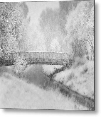 Winter's Dream Metal Print