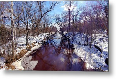 Wintertime In Necedah  Metal Print by Ricky L Jones