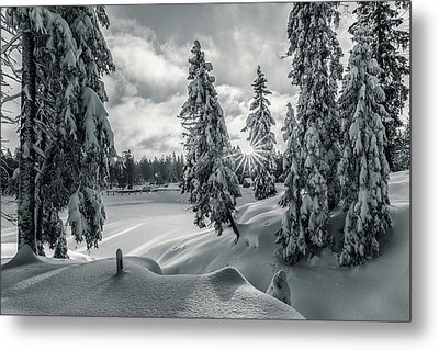 Winter Wonderland Harz In Monochrome Metal Print by Andreas Levi