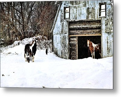 Metal Print featuring the photograph Wintery Day by Gary Smith