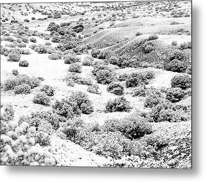Wintry Day In The High Mountain Desert Metal Print