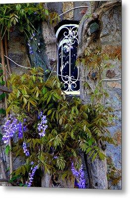 Wisteria Window Metal Print by Lainie Wrightson