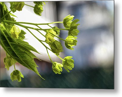 With The Breeze - Metal Print