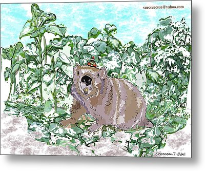 Woodchuck Chuck Metal Print by Susie Morrison