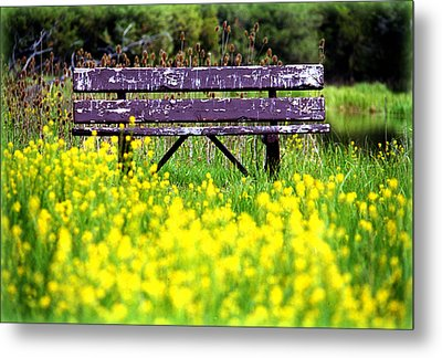 Wooden Bench Metal Print by Emanuel Tanjala