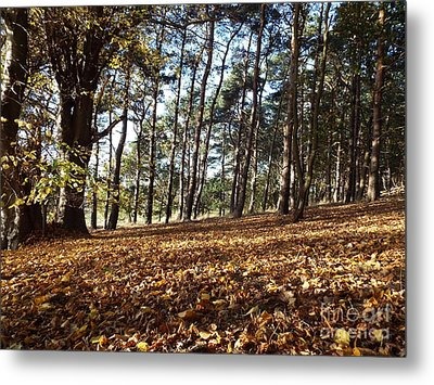 Woodland Carpet Metal Print