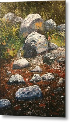 Woodland Stream Metal Print by Robert Tower