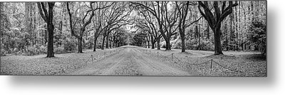 Metal Print featuring the photograph Wormsloe Pathway by Jon Glaser