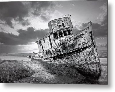 Wrecked In Point Reyes Metal Print