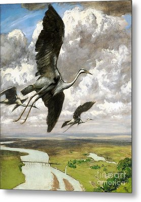 Wundervogel Metal Print by Pg Reproductions
