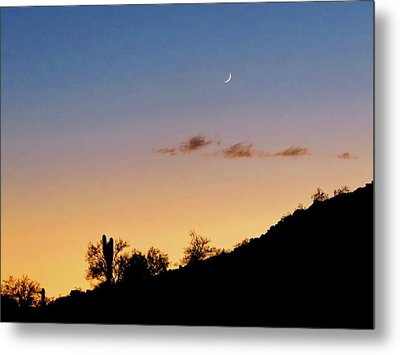 Y Cactus Sunset Moonrise Metal Print