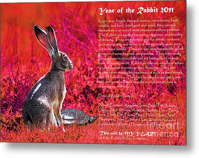 Year Of The Rabbit 2011 . Red Metal Print by Wingsdomain Art and Photography