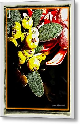 Metal Print featuring the photograph Yellow Berries by Joan  Minchak