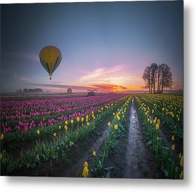 Metal Print featuring the photograph Yellow Hot Air Balloon Over Tulip Field In The Morning Tranquili by William Lee