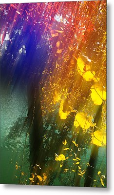Yellow Leaf Along The Lake Metal Print by Kat Besthorn