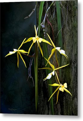 Metal Print featuring the digital art Yellow Orchid by Thanh Thuy Nguyen