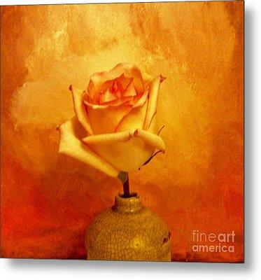 Yellow Red Orange Tipped Rose Metal Print by Marsha Heiken