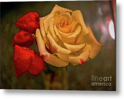 Metal Print featuring the photograph Yellow Rose And Chinese Lanterns by Diana Mary Sharpton