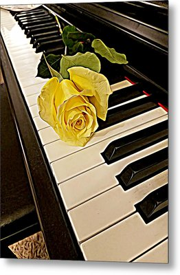 Yellow Rose On Piano Keys Metal Print