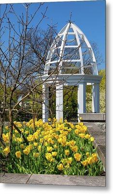 Yellow Tulips And Gazebo Metal Print