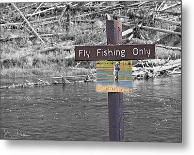 Yellowstone - Fly Fishing Composite - Signed Limited Edition Metal Print by Steve Ohlsen