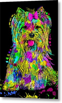 Yorkie Beauty Metal Print by Zaira Dzhaubaeva
