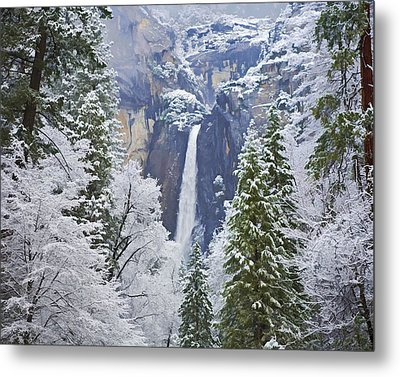 Yosemite Falls In The Snow Metal Print