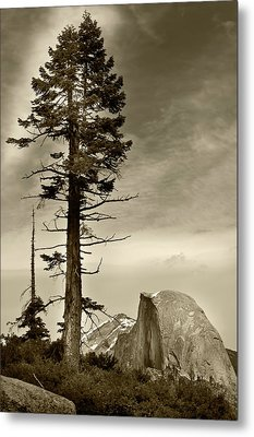 Yosemite National Park  Metal Print by John Hix