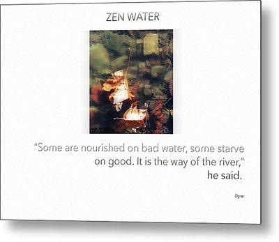 Zen Water  Metal Print by Steven Digman