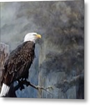 Freedom Haze Metal Print